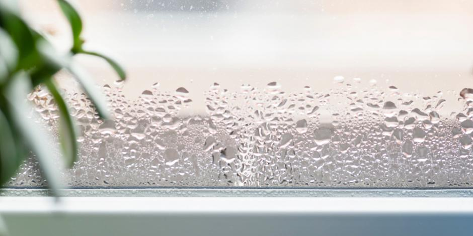 Condensation forming on the window of a humid house